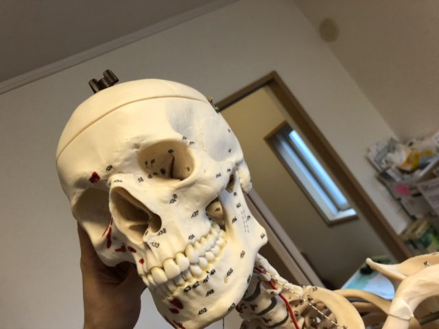 デスクワークによる頭痛